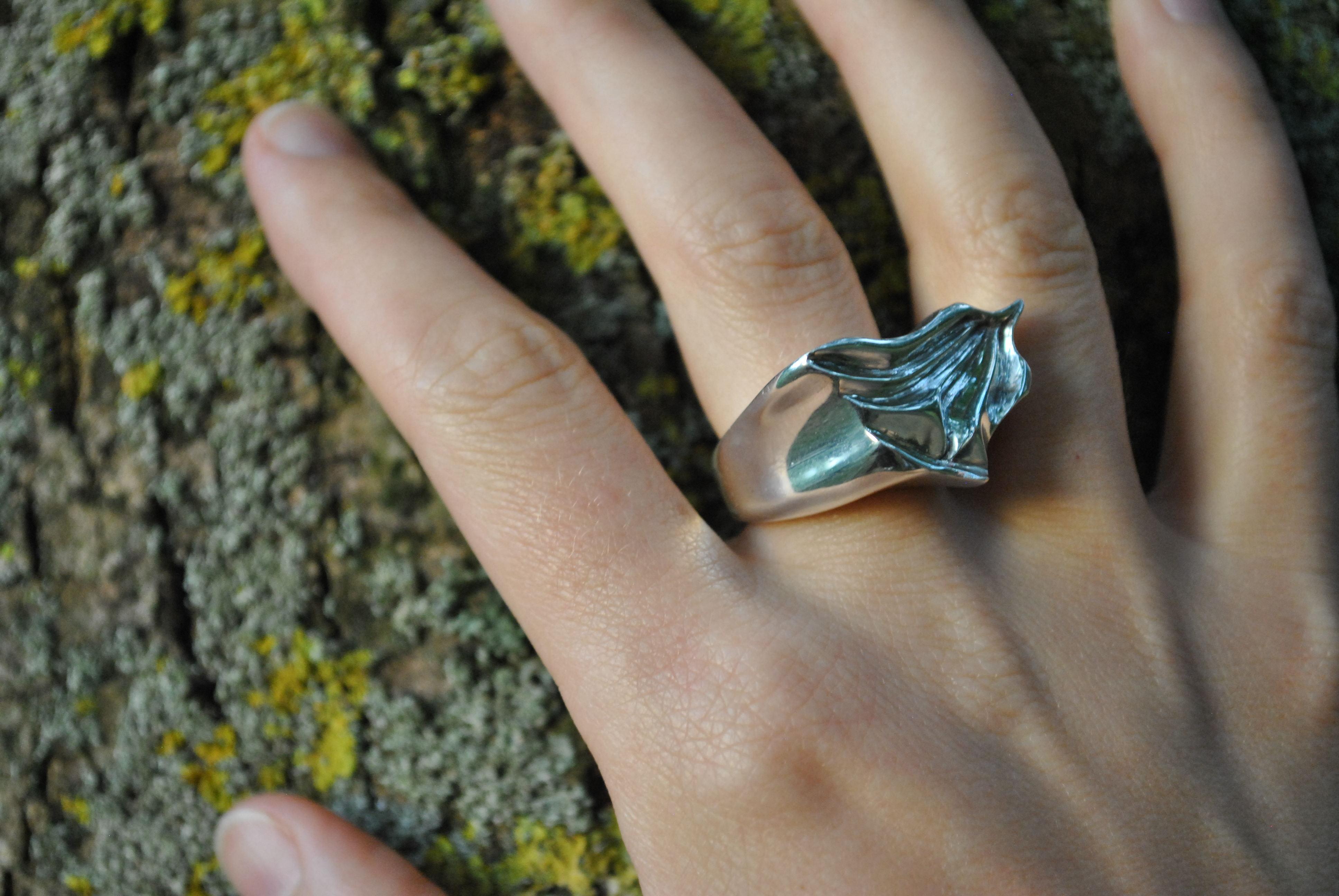 glacier ring lichen sml